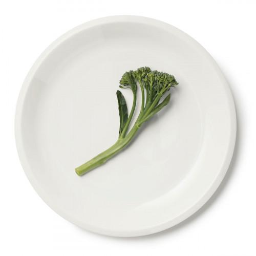 iittala Raami White Dinner Plate